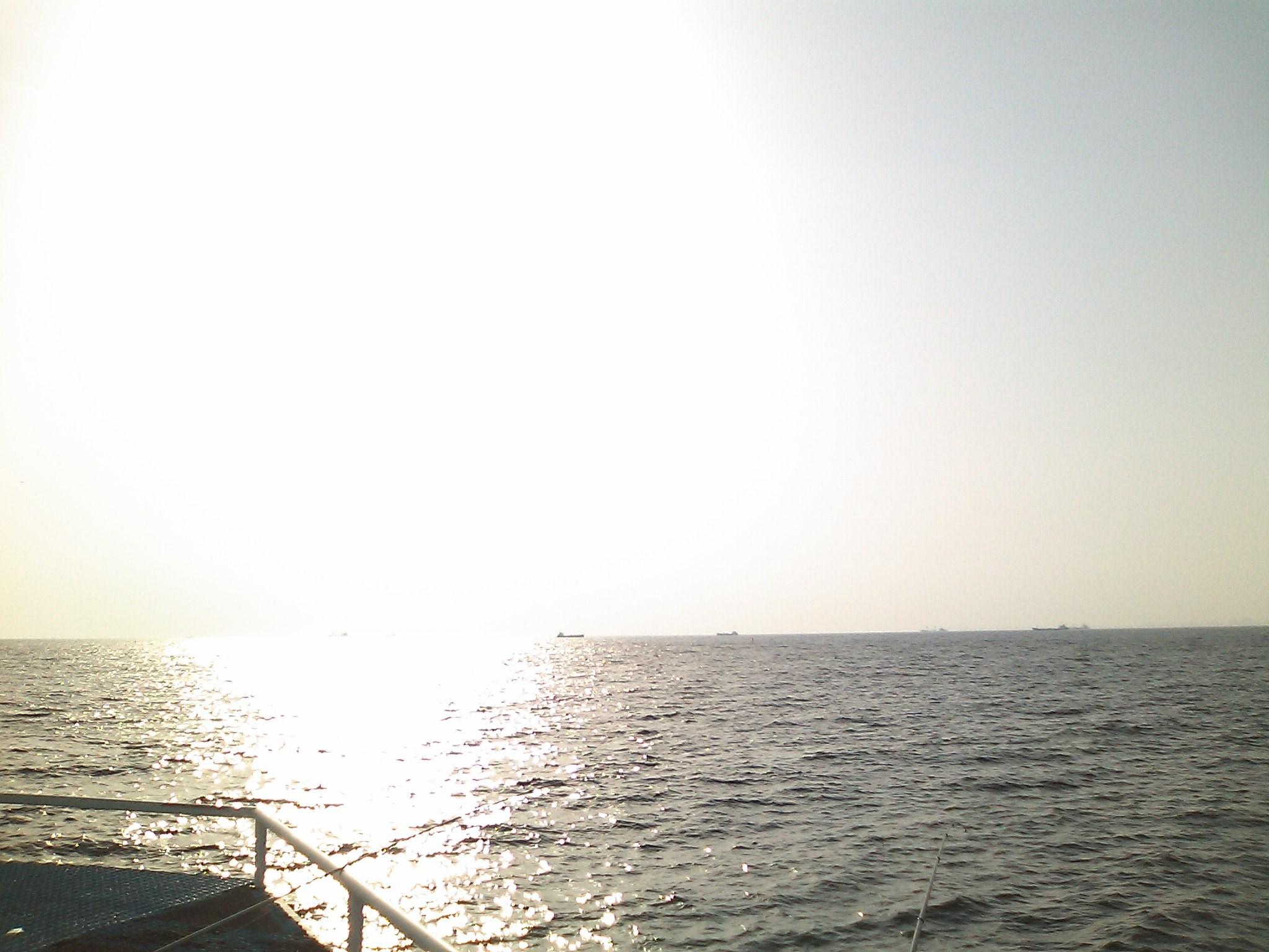 市原海釣り施設で、魚釣り