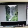 SILKYPIXで、写真を取り込みました。